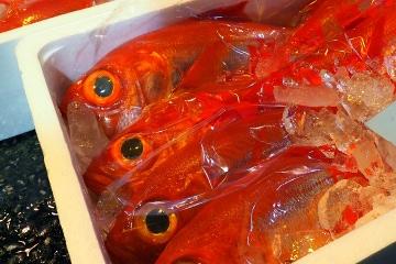 市場にならぶ新鮮な金目鯛