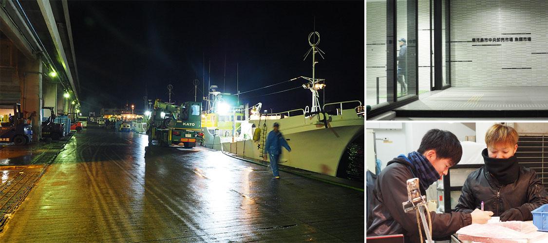 午前5時~ 早朝の鹿児島魚類市場