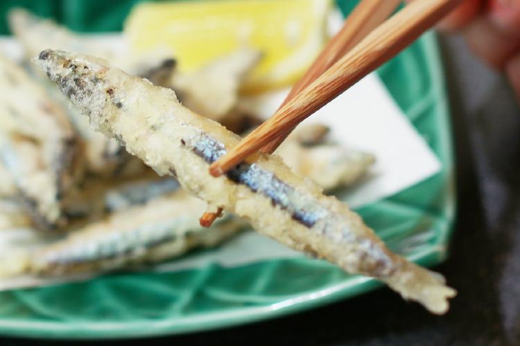 Banded blue sprat