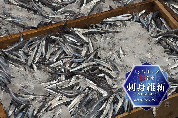 鹿児島魚類市場のキビナゴ